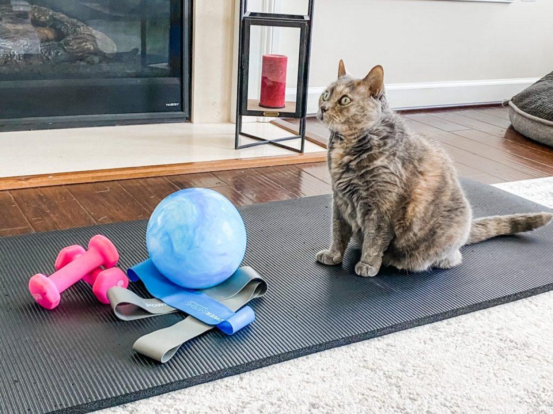 Pilates Props During Quarantine